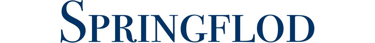 Springflod blogg: affärsmässig säkerhet